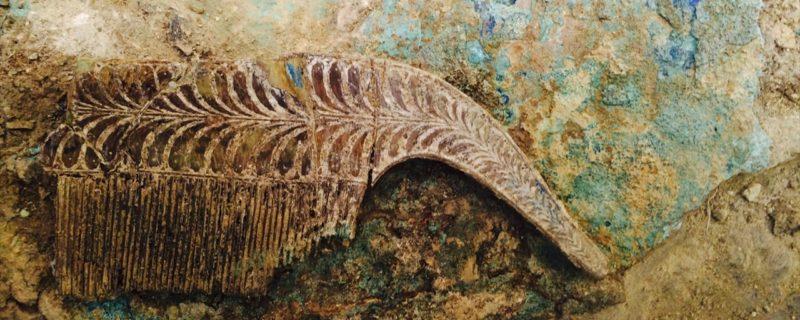 Peine de marfil hallado en la tumba Griffin / foto University of Cincinnati