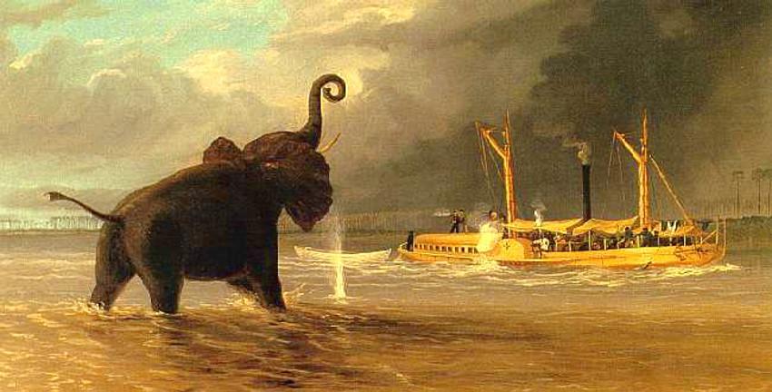 Tres exploradores, naturalistas y artistas que plasmaron África en sus pinturas