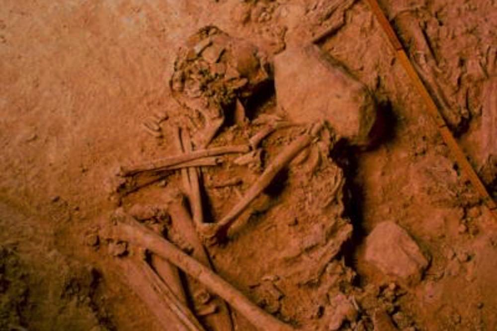 Los pueblos de las estepas apenas alcanzaron la Península Ibérica en la Edad del Bronce