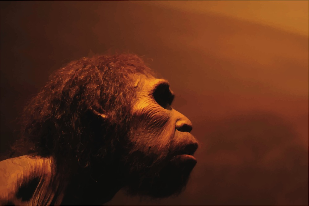 El pegamento más antiguo del mundo, fabricado por Neandertales hace 200.000 años