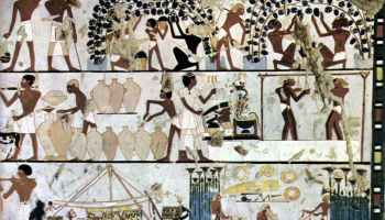 Fases de la elaboración del vino en la pintura de una tumba egipcia