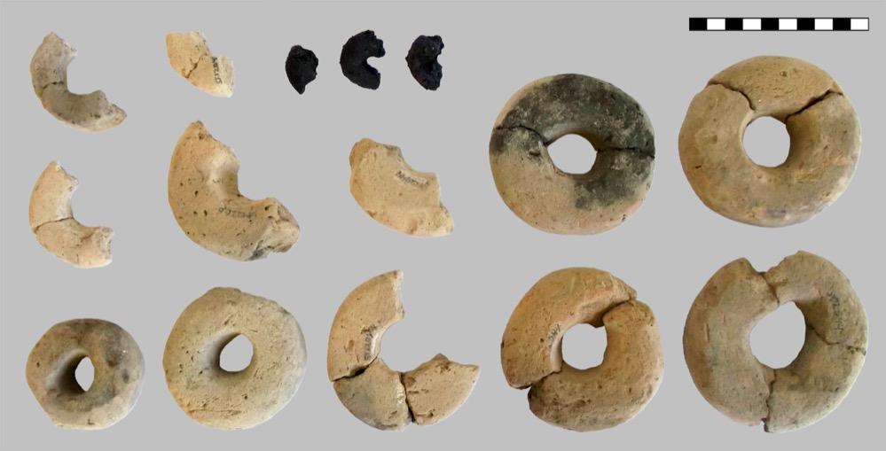 Encuentran anillos hechos de cereales en un yacimiento de la Edad del Bronce en Austria