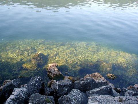 Magnifique plongée à pierre à Bise lac du Bourget : Depuis le bord on voit le fond jusque 6 mètres tellement le fond est claire