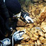 plongee omble chevalier pierre à bise lac du Bourget