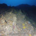 Plongée sur le tombant des corailleurs à Cavalaire