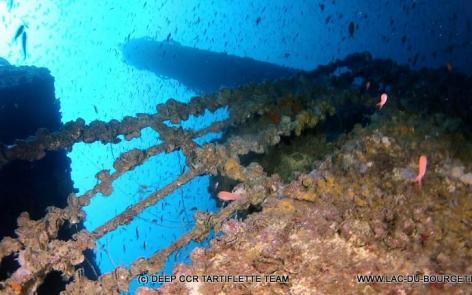 Plongée épave Haven Arenzano