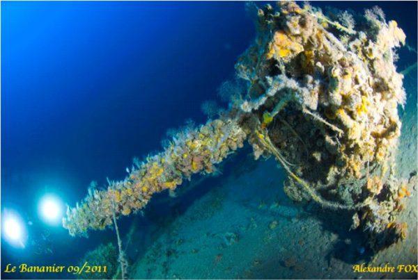 Plongée sur l'épave du Bananier le Canon -90 mètres