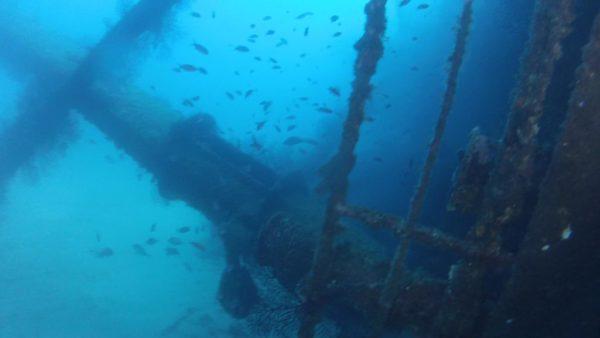 Plongée à Marseille sur l'épave du Chaouen