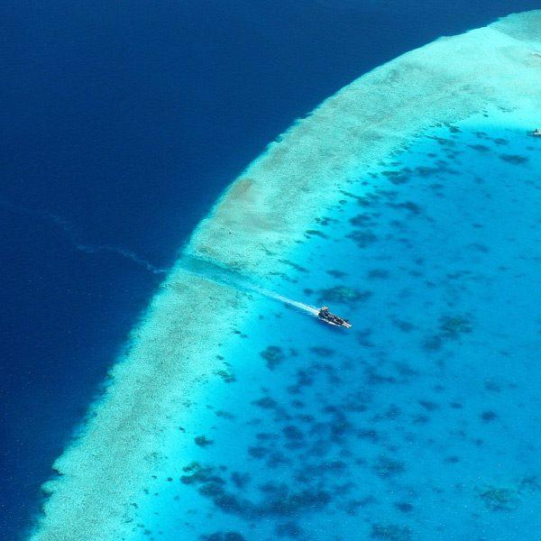 voyage plongée croisière