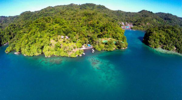Plongée Lembeh Indonésie Paradis pour les accros de la plongée
