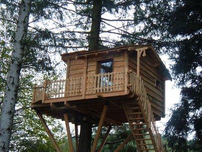 cabane dans les arbres et sur l eau