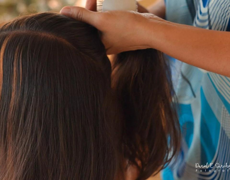 Peinado - Pollera de gala