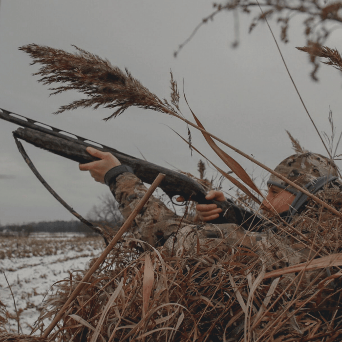Canada Goose hunting guide
