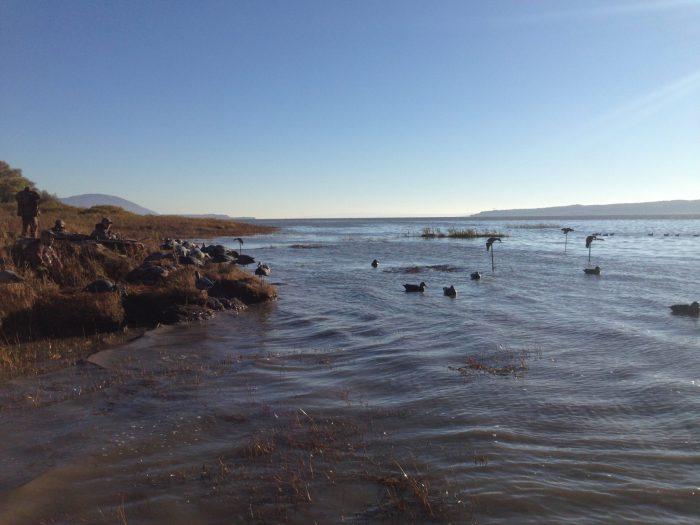 Set-up de canard en bordure du fleuve St-Laurent - Québec