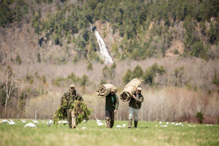 Préparation chasse Québec
