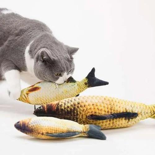 pez mascota - la caja de bruno