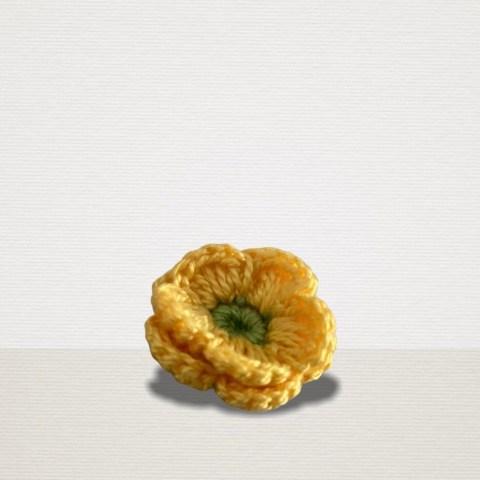 Gelbe Ansteckblume mit grüner Blüte