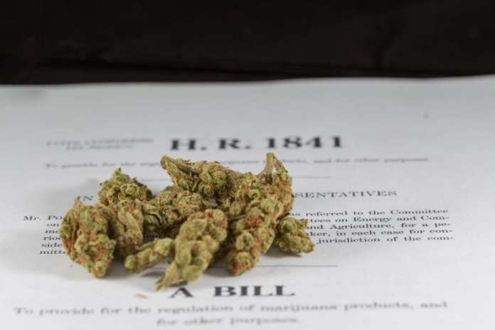 Image result for New Congressional Bill Would Automatically Seal Marijuana Records
