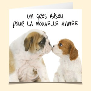 Voeux Doggy