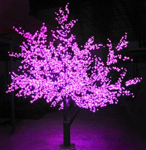 purple lights tree