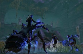 elder-scrolls-online-araña