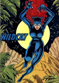 Nuevos héroes Wildcat