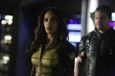 Vixen en Arrow (7)