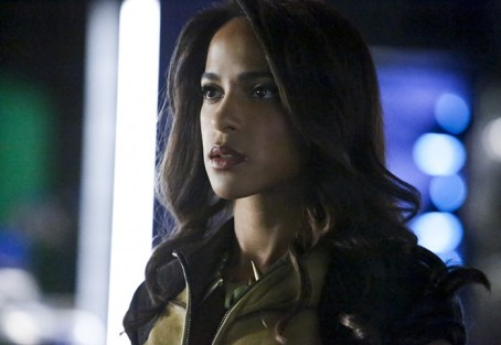 Vixen en Arrow (9)