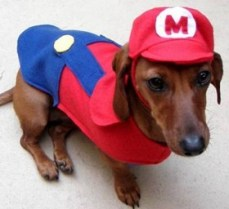 1-mario-dog-costume-280x256 - copia