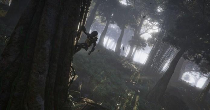 Ghost Recon Wildlands Depredador (7)