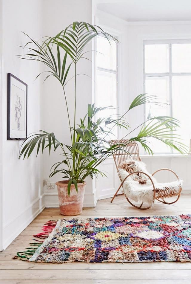 decorating with plants 8