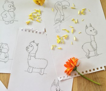 peruvian-animals-ilustrations-3