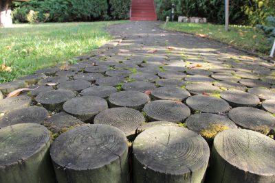 Chemin en rondin de bois