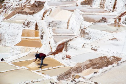 Worker in the salt mine