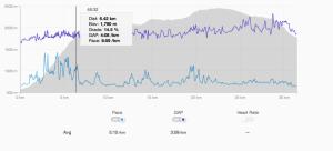 """Exemple sur la Sierre Zinal d'un certain Sage Canaday : une moyenne ramené à 3'59/km sur plat (pour un record sur marathon à 2h16'52"""" c'est pas mal)"""