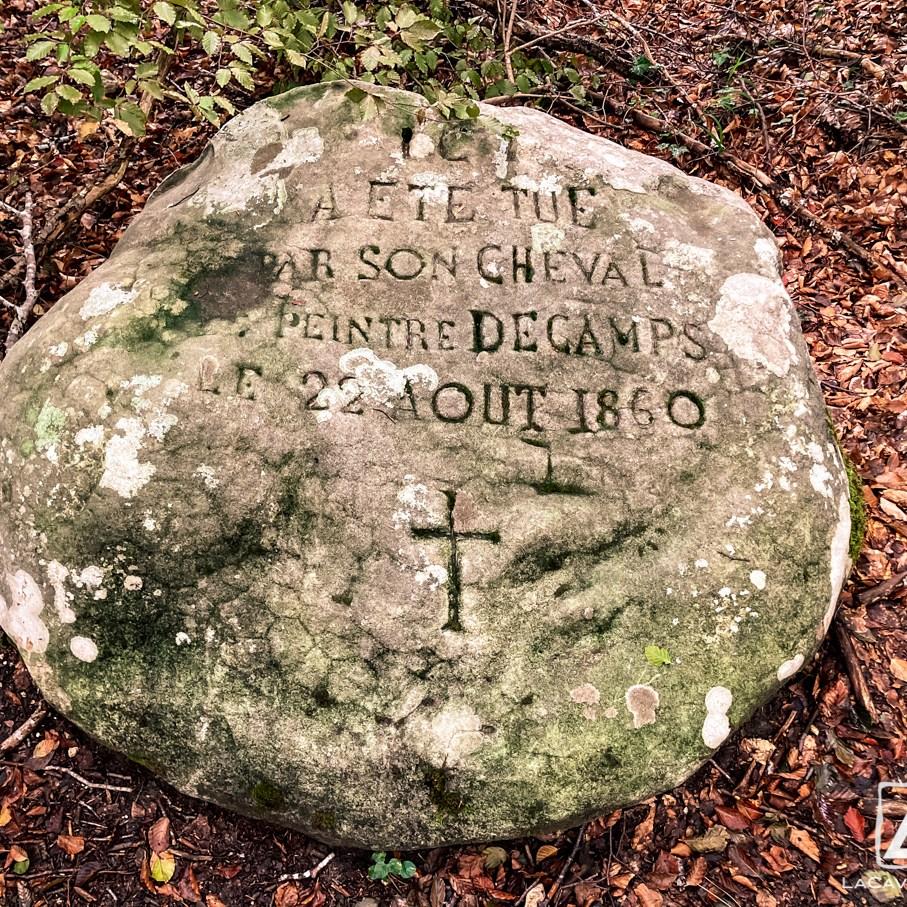 Où courir en forêt de Fontainebleau ? 19