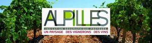 Logo IGP Alpilles