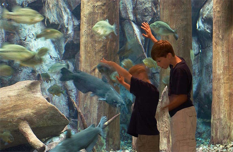 Cabelas Aquarium