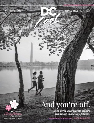 Ad campaign for the Washington, DC, tourism board