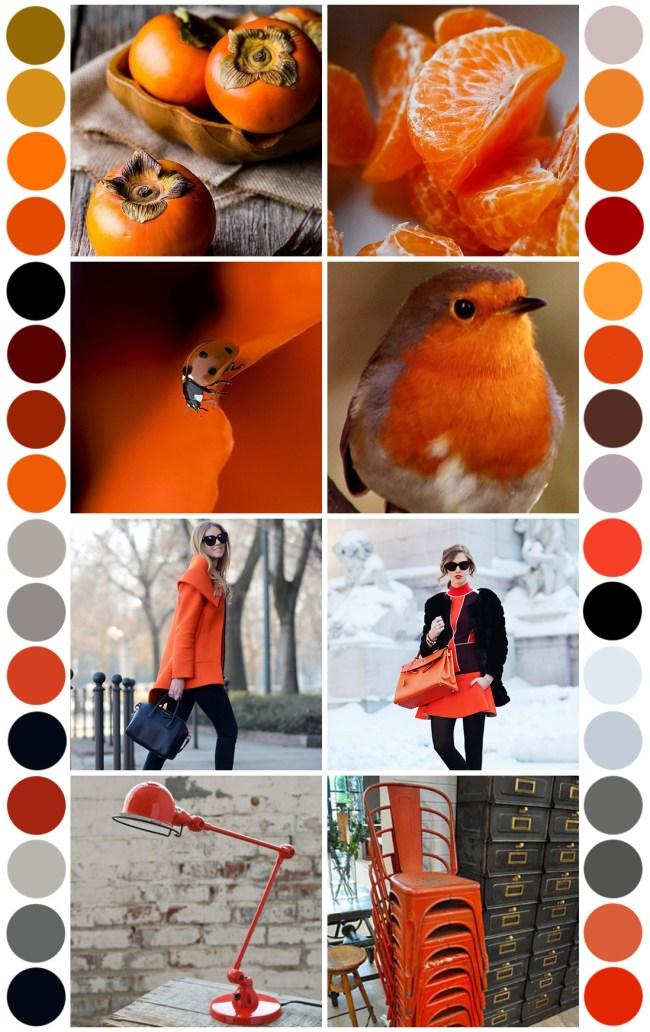 Color Palette - Arancio