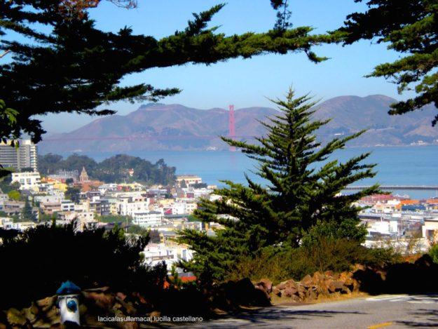 San Francisco_Cosa vedere17