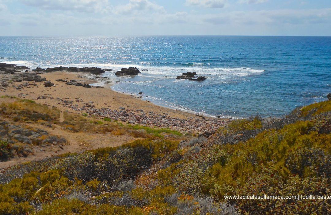 Sardegna: dalla natura selvaggia al mare. Tour tra Planargia e Romangia
