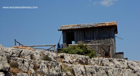 Barbagia tradizioni Sardegna