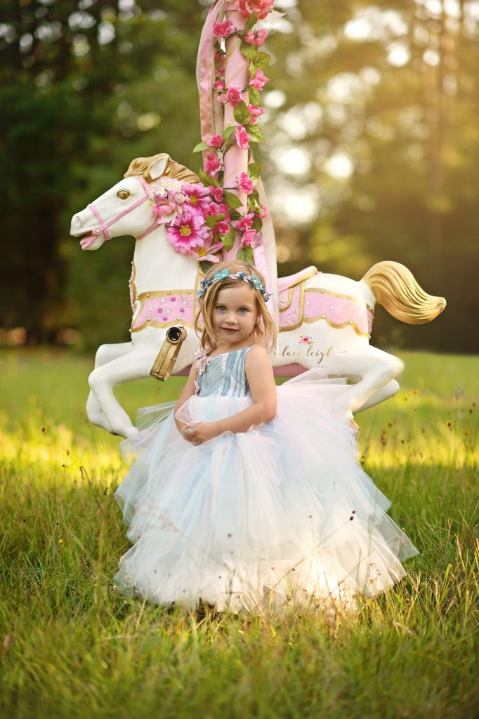 Flower Hoop  and Carousel Horse Sessions - Houston Photographer