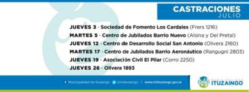 Nada es lo que parece en el conflicto entre la Dirección de Zoonosis de Ituzaingó y el Colegio de Veterinarios 4