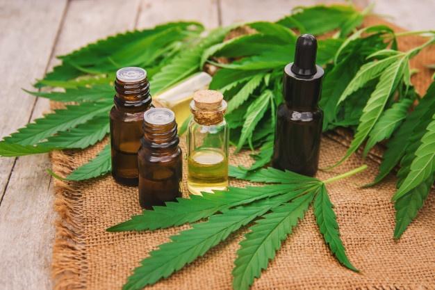 Fin a la injusticia: Ya es legal en toda la Argentina el autocultivo de cannabis medicinal