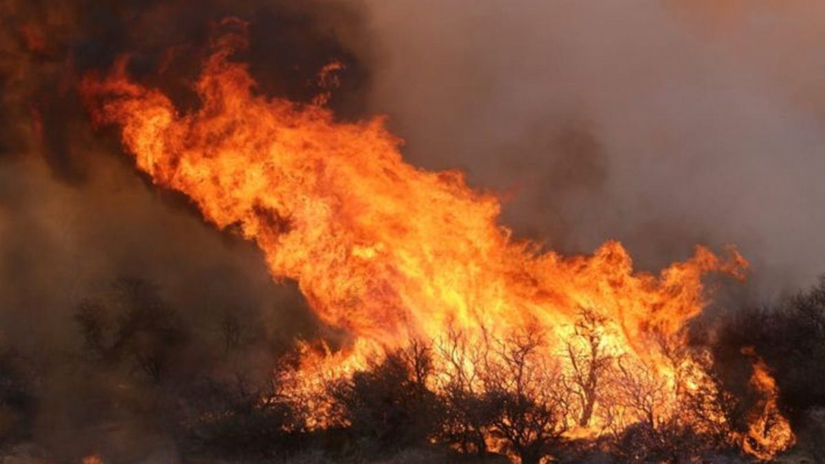 Incendios forestales en Córdoba: Cómo colaborar para combatirlos