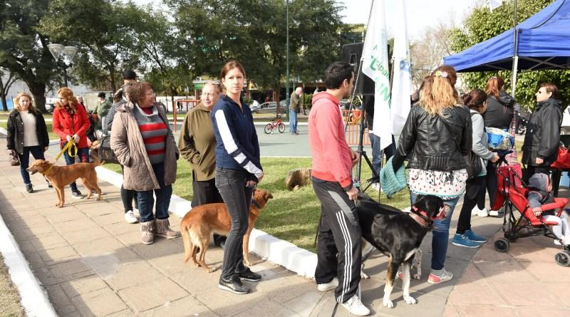 Ituzaingó: El municipio ofrece turnos para castración de mascotas