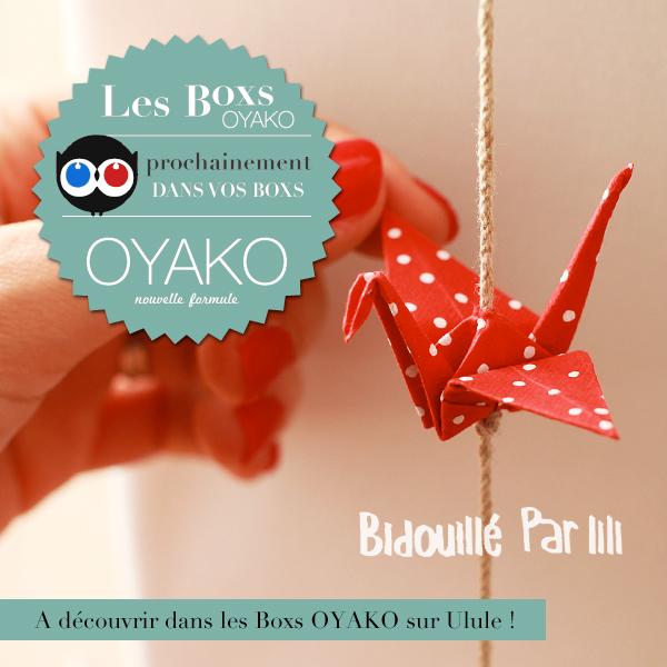Bidouillé par lili mis en boîte par OYAKO