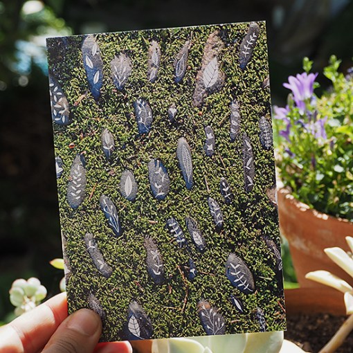 Carte petits cailloux